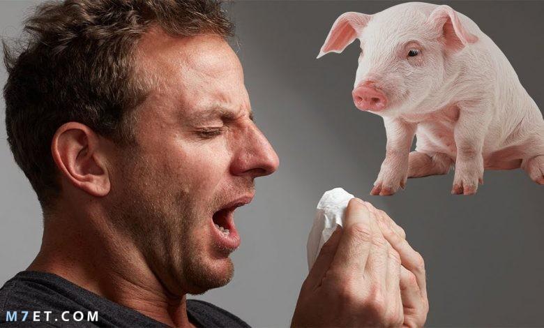 الوقاية من انفلونزا الخنزير