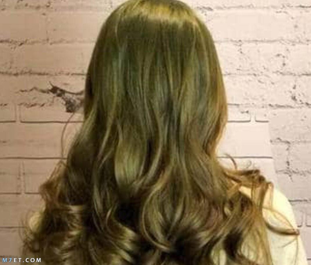 طريقة صبغ الشعر أشقر رمادي زيتوني