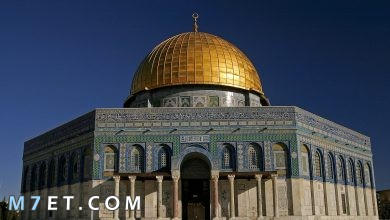 Photo of السياحة في فلسطين وأفضل الأماكن السياحية بها