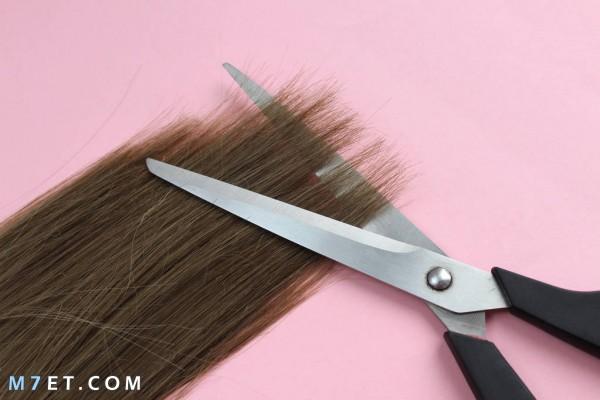 كيف أقص أطراف شعري في المنزل