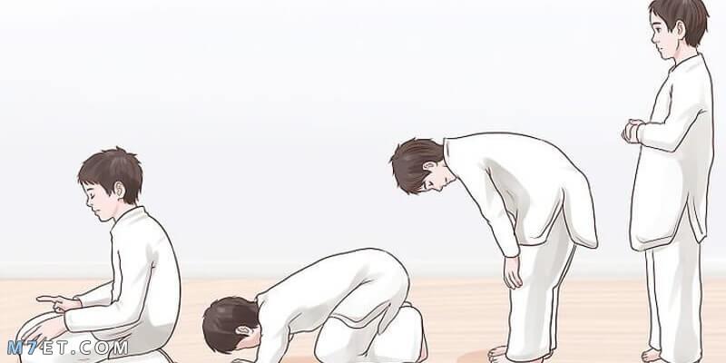 كيفية صلاة الوتر