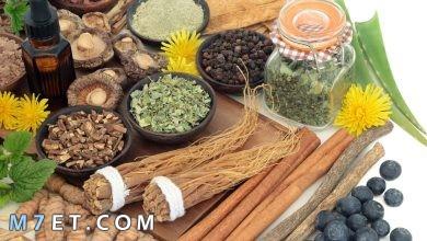 Photo of علاج التهاب الخصية بالأعشاب | أقوى 8 أعشاب طبيعية لإلتهاب الخصية