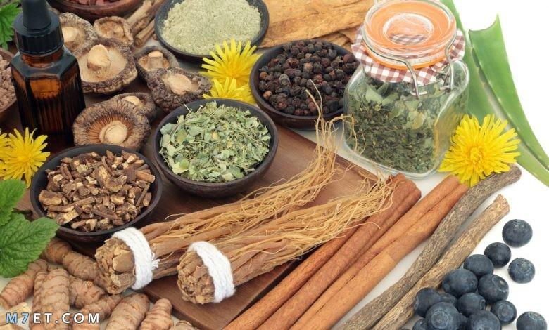 علاج التهاب الخصية بالأعشاب
