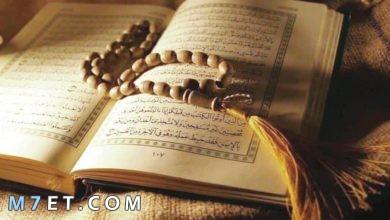 Photo of آيات التأمل في القرآن الكريم ومعانيها 2021