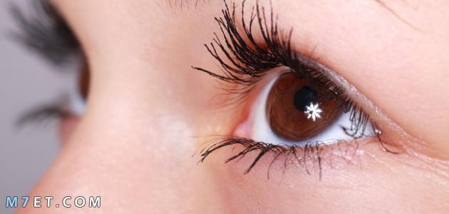 أسباب لمعان العين