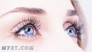 Photo of أسباب لمعان العين العضوية والنفسية | كيفية الحصول على عيون لامعة وجذابة طبيعيًا