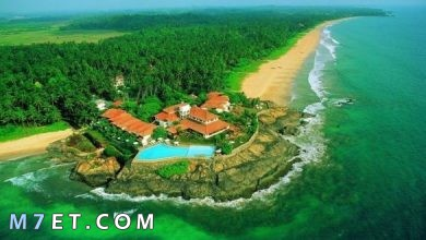 Photo of أفضل وقت للسفر إلى سريلانكا | وافضل الأماكن السياحية بها