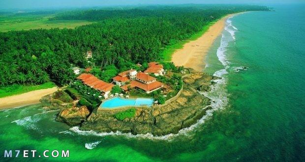 أفضل وقت للسفر إلى سريلانكا