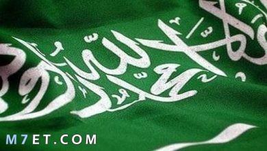 Photo of أهمية موقع السعودية بالنسبة لدول شبه جزيرة العرب