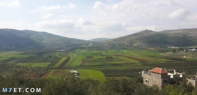 أهم سهول فلسطين الساحلية