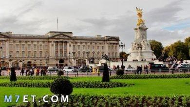 Photo of اين اذهب في لندن وأفضل معالمها السياحية
