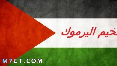 Photo of اين يقع مخيم اليرموك وأهم المؤسسات المشرفة عليه