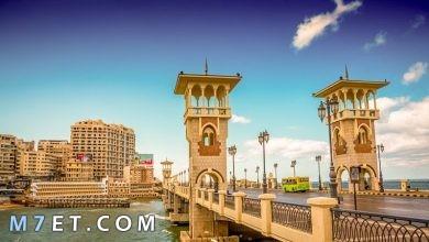 Photo of اين تذهب في الإسكندرية | واجمل الأماكن بها