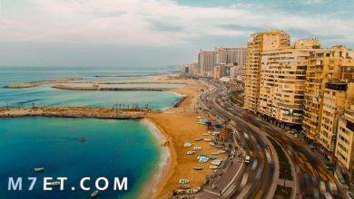 Photo of أجمل مدن سياحية في مصر لعام 2021