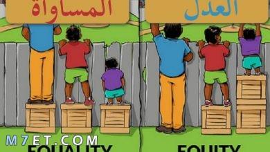 Photo of الفرق بين العدل والمساواة