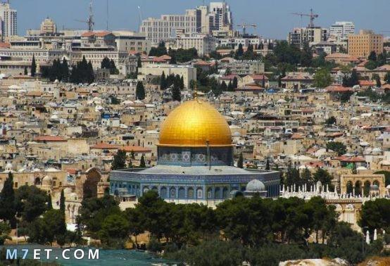 اكبر مدينة في فلسطين