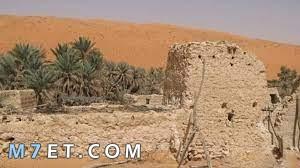 اين يقع مسجد ضرار وأهم المعلومات عنه