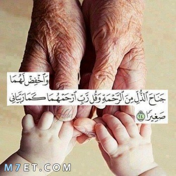 حكم عن بر الوالدين