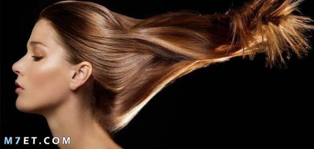 افضل زيت لتطويل الشعر في اسبوع