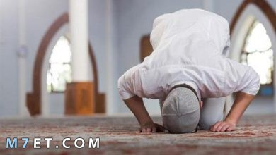 Photo of حكم الصلاة وأهميتها في الإسلام