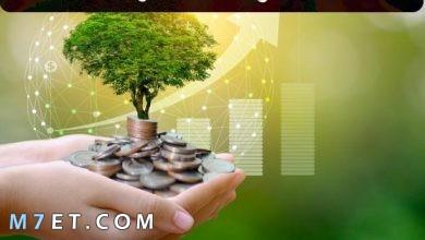 Photo of طرق الاستثمار وكيفية تشغيل الأموال