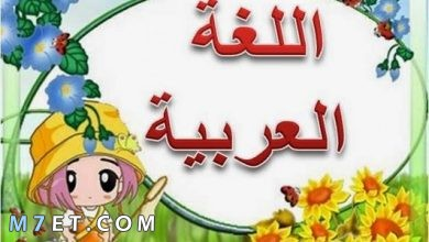 Photo of عبارات قصيرة عن اللغة العربية أقل تعبير بالفخر العربي وبالأصول التاريخية