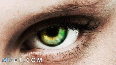 Photo of أعراض العين والحسد وتعريف كل منهما