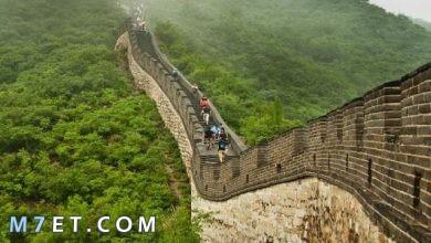 Photo of اين يوجد سور الصين العظيم وأهم المعلومات عنه