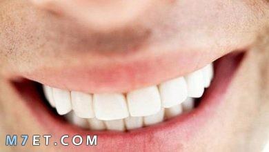 Photo of كيف نحافظ على الاسنان بالخطوات
