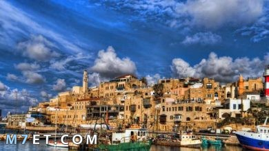 Photo of اين تقع مدينة يافا وسبب تسميتها بهذا الاسم