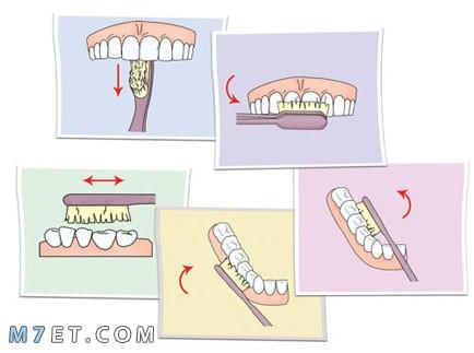 كيف انظف اسناني في البيت
