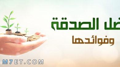 Photo of فضل الصدقة كنز ثمين في حياتك وبعد مماتك