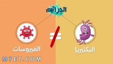 Photo of الفرق بين البكتيريا والفيروس
