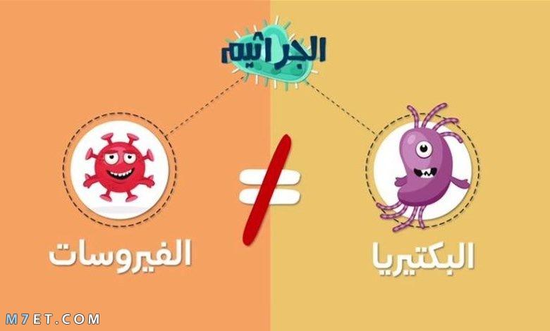 الفرق بين البكتيريا والفيروس
