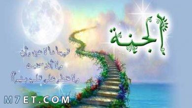 Photo of اسماء الجنة| تعرف على عدد أبوابها