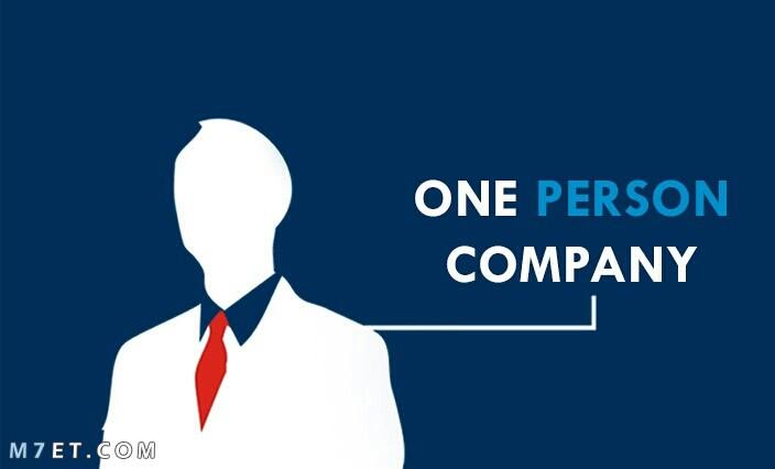 مميزات شركة الشخص الواحد