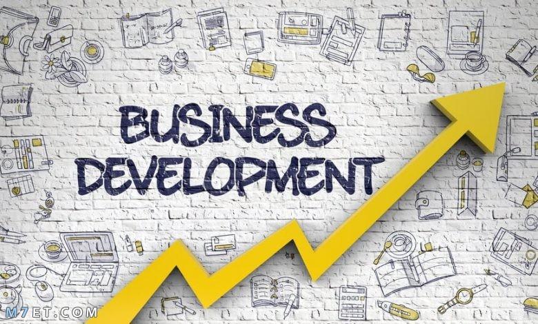 تطوير الأعمال