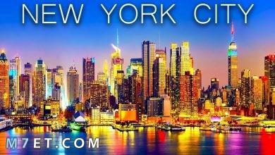 Photo of اين تذهب في نيويورك ومعالمها السياحية