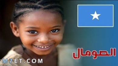 Photo of بحث عن دولة الصومال