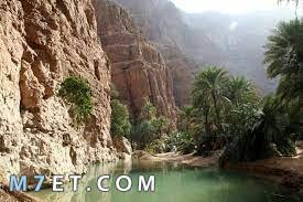 اول دولة عربية تشرق فيها الشمس