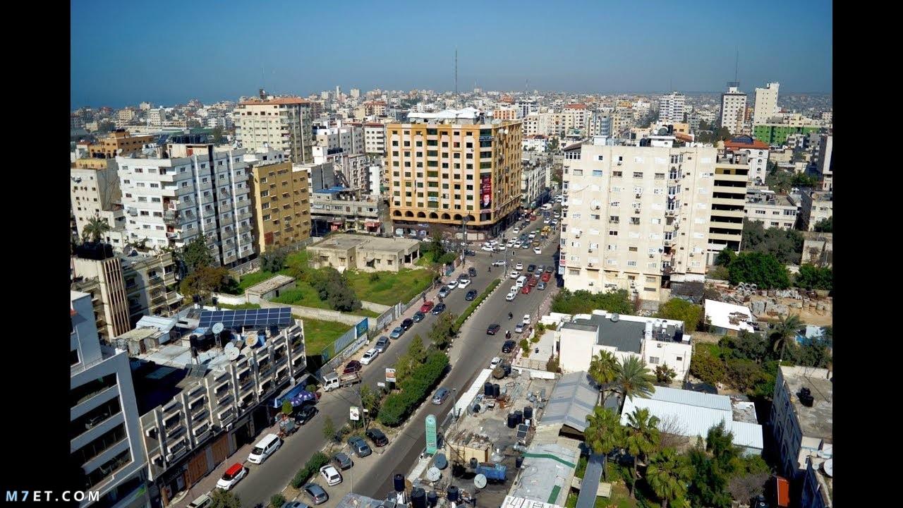 أكبر مدن فلسطين