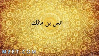 Photo of بحث عن انس بن مالك وأشهر صفاته