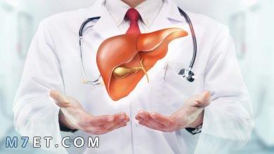 Photo of أهم المعلومات عن تحليل وظائف الكبد