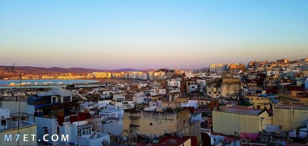 بحث عن مدينة طنجة