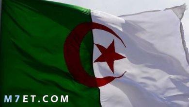 Photo of أهم خصائص الدولة الجزائرية