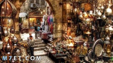 Photo of أين أذهب في القاهرة واهم الأماكن السياحية بها