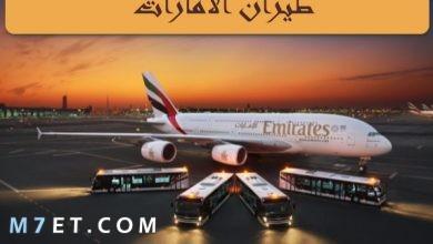 Photo of طيران الامارات |رقم الخط الساخن لطيران الإمارات