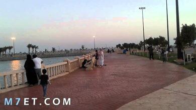 Photo of قرية ذهبان في الأسواق والمتنزهات
