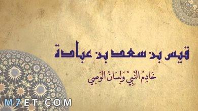 Photo of صفات سعد بن عبادة