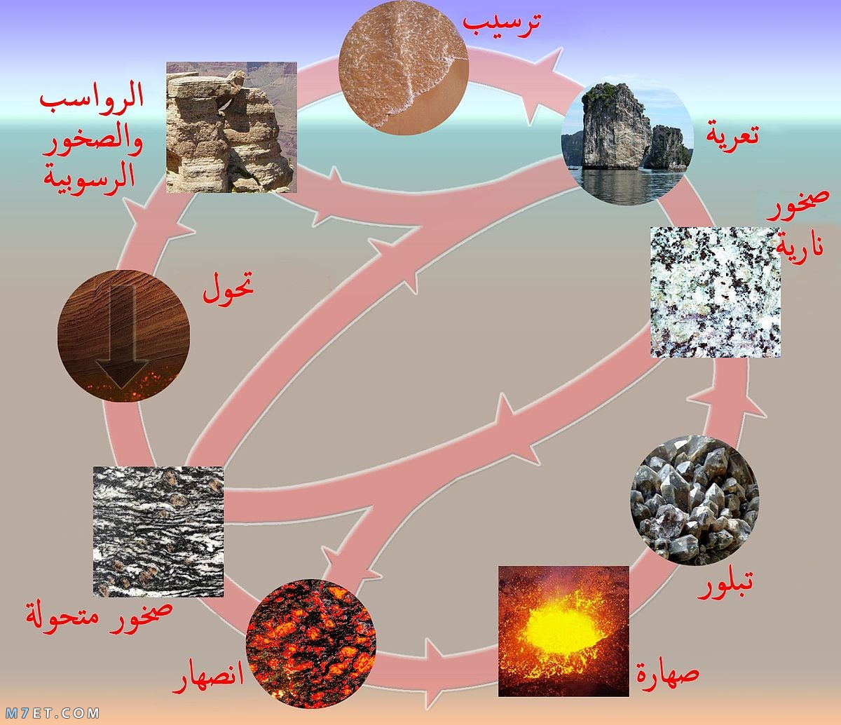 أنواع الصخور الرسوبية
